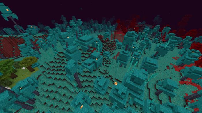 minecraft 1.16.1